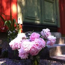 hellrosa vollschwere Pfingstrosen in einer kleinen Vase vor den Steinstufen zu unserem falurotem Schwedenhaus mit grüner Tür. Das Licht wirft Sommertypisch hell gleissende Flecken auf das warme rote Holz des Hause. Das Licht tanzt.