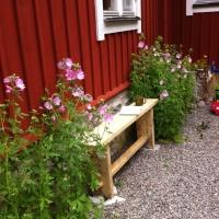 """""""Wumms"""" - Auswandern und in Schweden leben"""