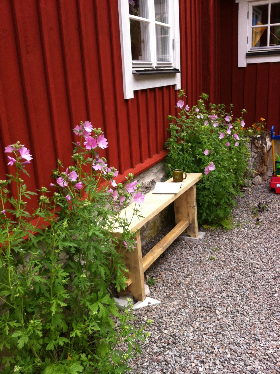 Schweden blüht und grünt im Sommer besonder hellrosa Malven haben es mir angetan. Davon umrahmt eine kleine helle Holzbank vo unserem schwedenroten Haus