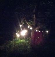 Abende voller Licht