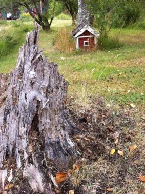 Mini Schwedenhaus entdeckt.