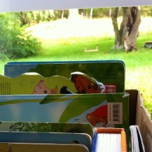 Bücherkiste vonm Birkerräuber vorm Gartenausblick mit Schakel und Sandkasten