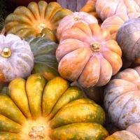 ZufallKüchenZauber: MelonenKürbisSuppe .. ja wirklich
